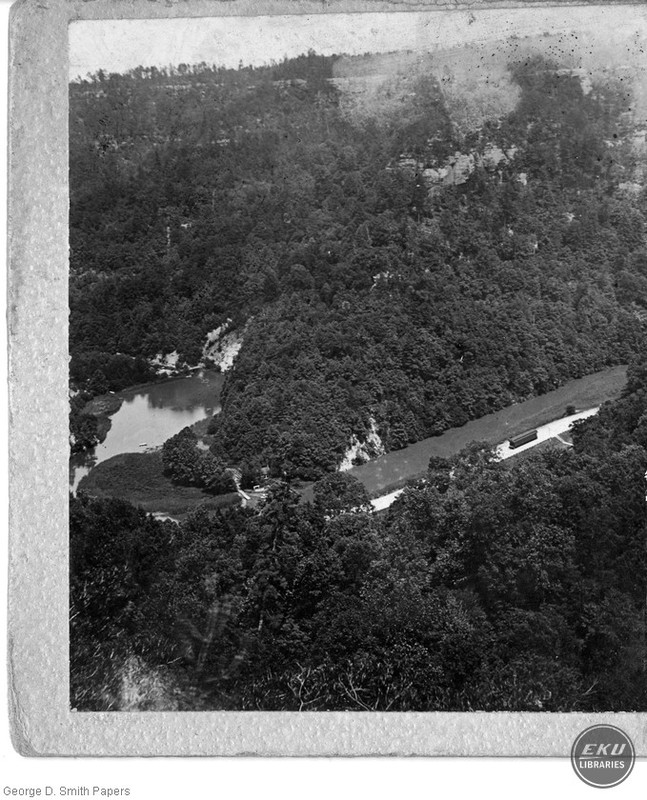 Aerial Picture of Woods
