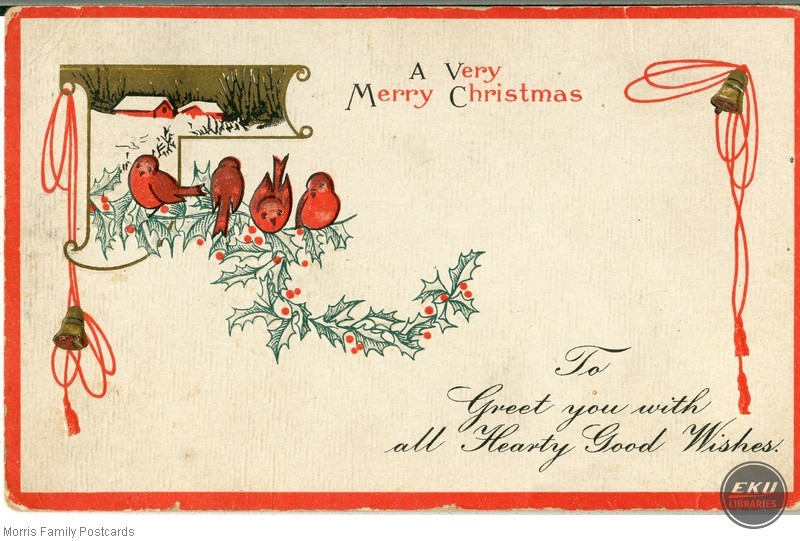 Cardinals on Mistletoe