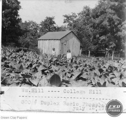William Hill Farm, College Hill