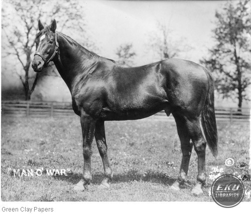 Man O' War, Taken on his 15th birthday